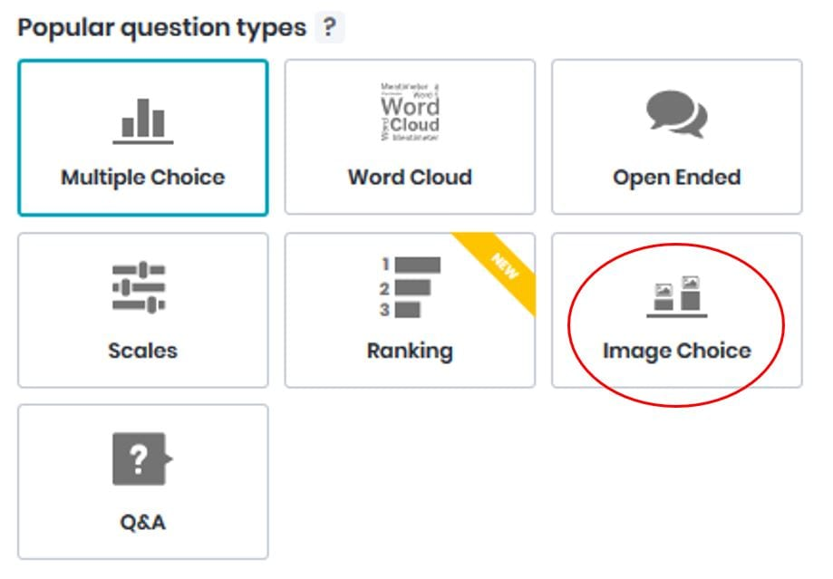 Screenshot of Image Choice question type